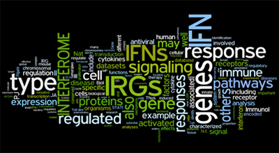 Interferome Wordle